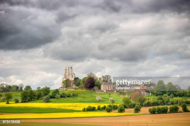 mont-saint-eloi - saint eloi photos et images de collection
