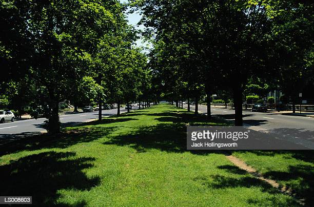 monument boulevard - boulevard stock pictures, royalty-free photos & images