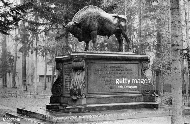 A monument commemorating a hunting expedition of Tsar Alexander II Romanov of Russia Bialowieza Forest Russian Empire 1897