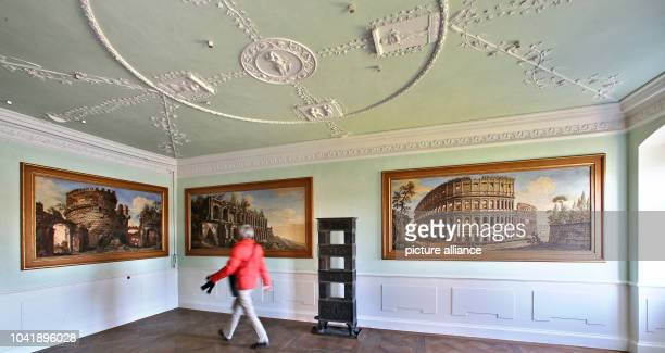 Monument conservationist Annette Scholtka views the freshly restored suite with Roman motive of Prince Johann Georg, younger brother of Prince Franz...