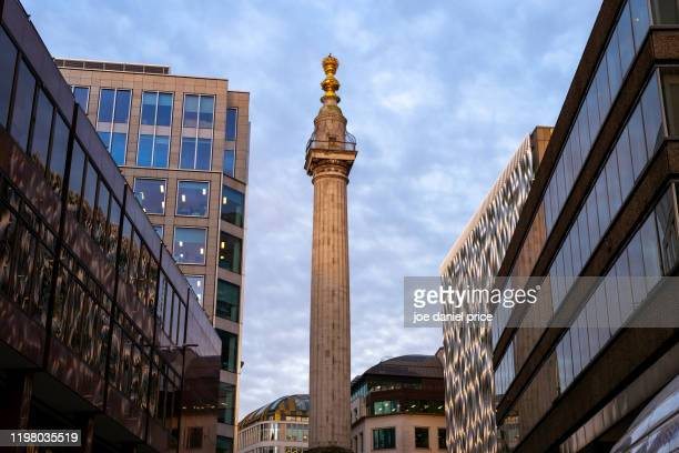 monument to the fire of london, london, england - great fire of london stock pictures, royalty-free photos & images