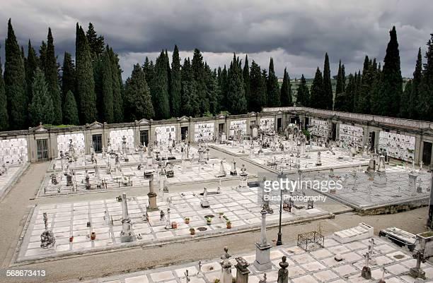 monumental cemetery of san miniato, florence - san miniato stock pictures, royalty-free photos & images