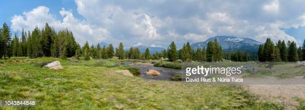 monumental landscape of yosemite - panoramic stock pictures, royalty-free photos & images