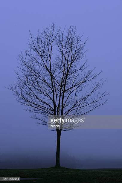 Moody Blue November Day