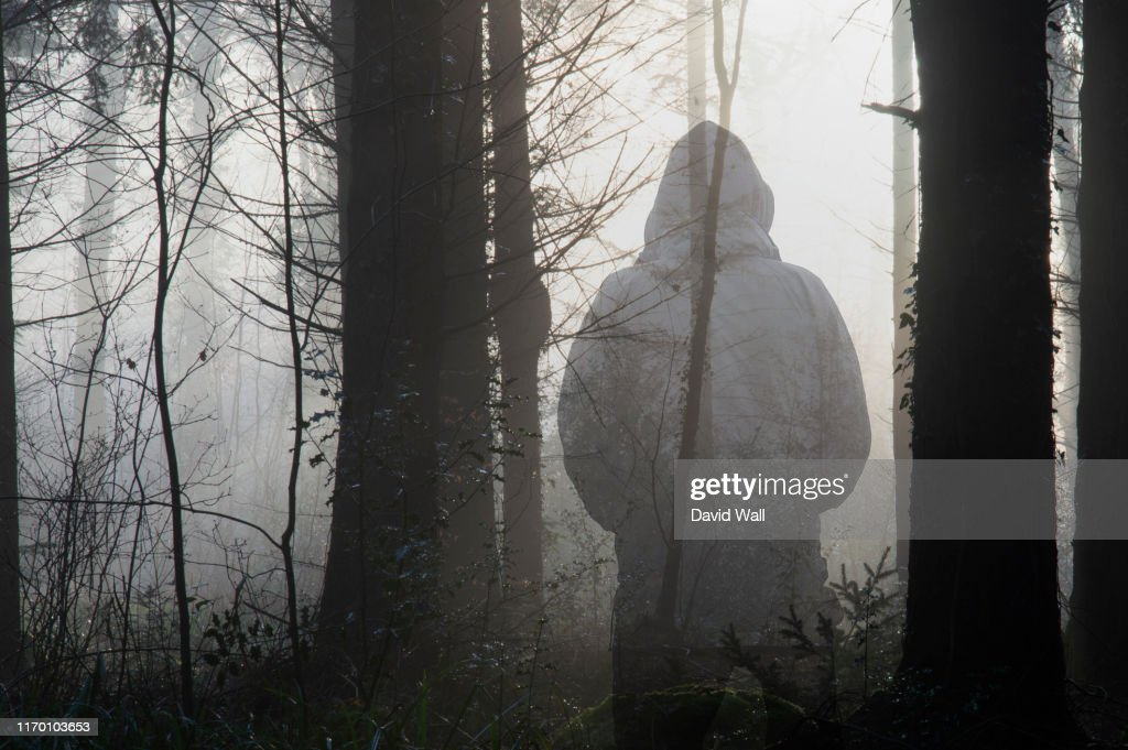 A moody forest. With sunlight silhouetting the trees, on a misty winters day. With a spooky hooded figure over layered on top. : Stock Photo