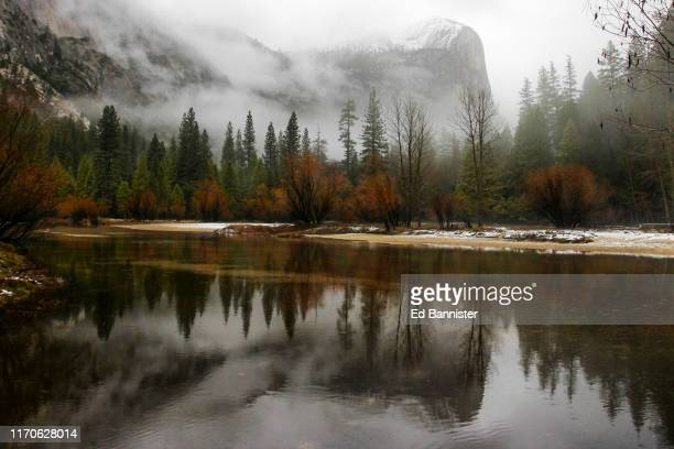 moody reflection storm fog river trees mountain - coniferous tree stock pictures, royalty-free photos & images