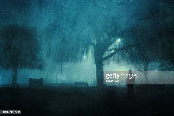 a moody silhouette of a man. standing in a city park on a foggy winters night. with a grunge, artistic, edit - public park stock pictures, royalty-free photos & images