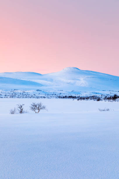 Moody winter landscape, Lebesby, Norway