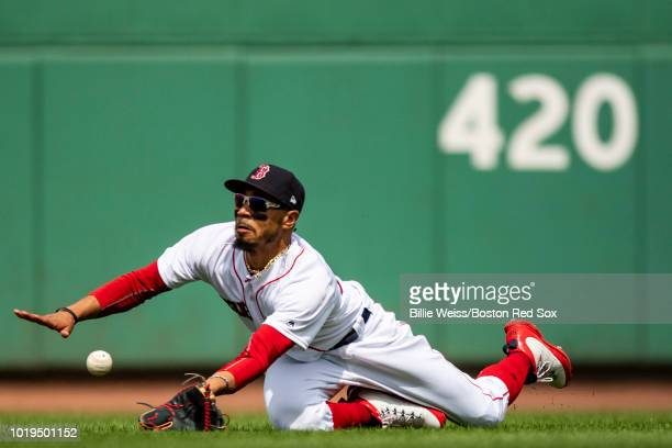 Mookie Betts of the Boston Red Sox makes a diving catch of a ball in the fourth inning of a game against the Tampa Bay Rays on August 19 2018 at...