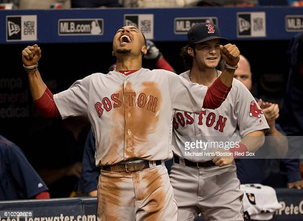 Mookie Betts of the Boston Red Sox reacts after a grand slam by Dustin Pedroia against the Tampa Bay Rays in the seventh inning on September 24 2016...
