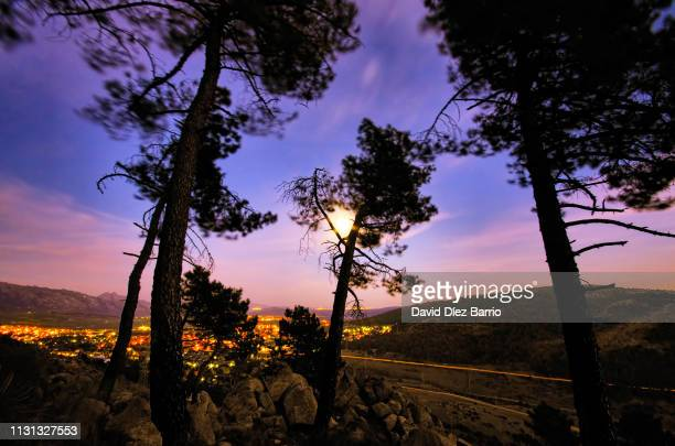 Moon between tree branches with the village of 'Collado Mediano' in the background