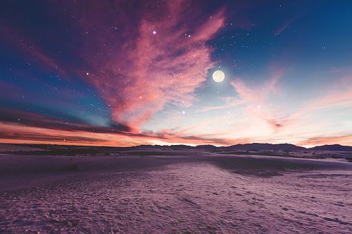 Moon gazing 509546436