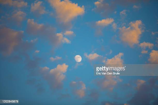 moon in cloudy sky - eric van den brulle stock pictures, royalty-free photos & images