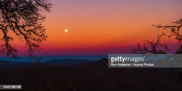 moon in sky at dusk in henry w. coe state park - koeberer stock photos and pictures