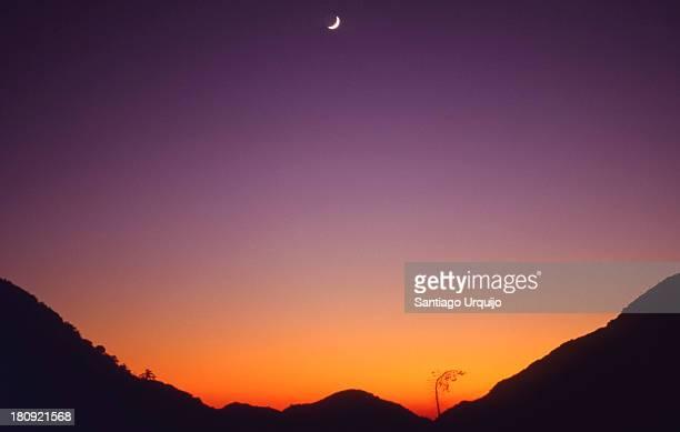Moon over Strawberry Peak at twilight