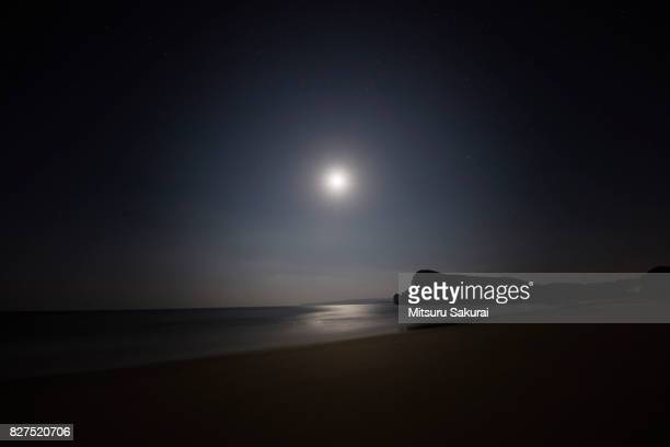 moon - moonlight stock pictures, royalty-free photos & images