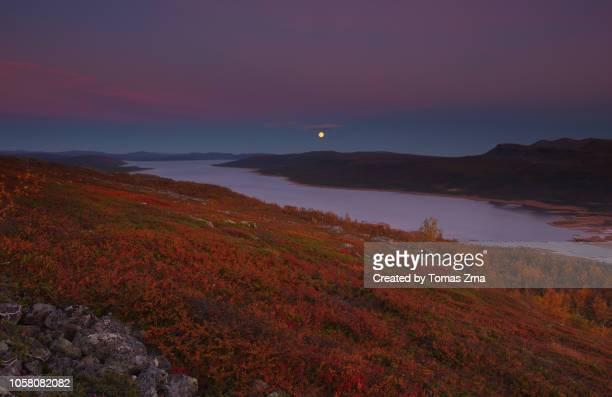 moon rises over autumn lapland - norrbotten province stock photos and pictures