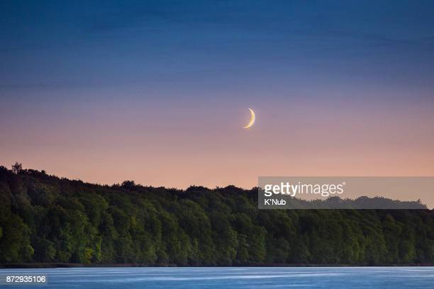 Moon set over the tree behind the smooth river from lake at sunset near Copenhagen Denmark
