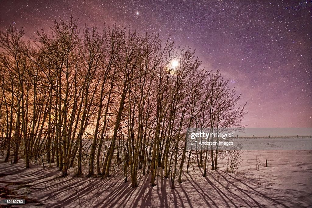 Moon Shadows : Stock Photo