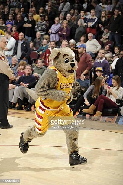 Moondog, Mascot of the Cleveland Cavaliers runs onto the court against the Philadelphia 76ers at The Quicken Loans Arena on November 9, 2013 in...