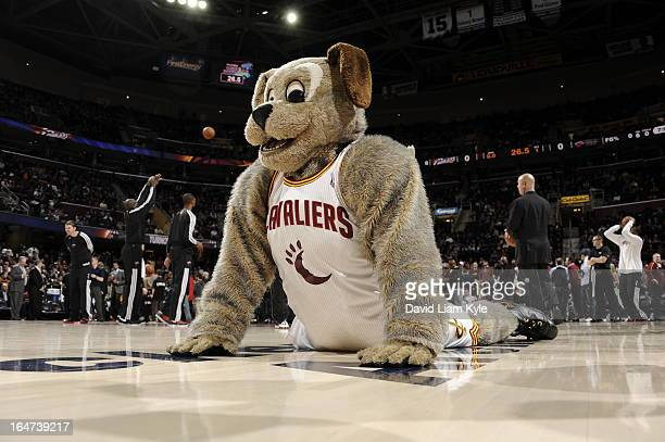 Moondog the Cleveland Cavaliers mascot stretches before the game against the Miami Heat at The Quicken Loans Arena on March 20 2013 in Cleveland Ohio...