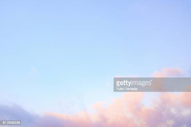 moonlight blues - romantic sky at dawn - pink flowers stock pictures, royalty-free photos & images