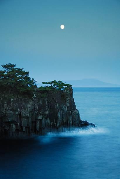 Moonlight on Jogasaki Coast
