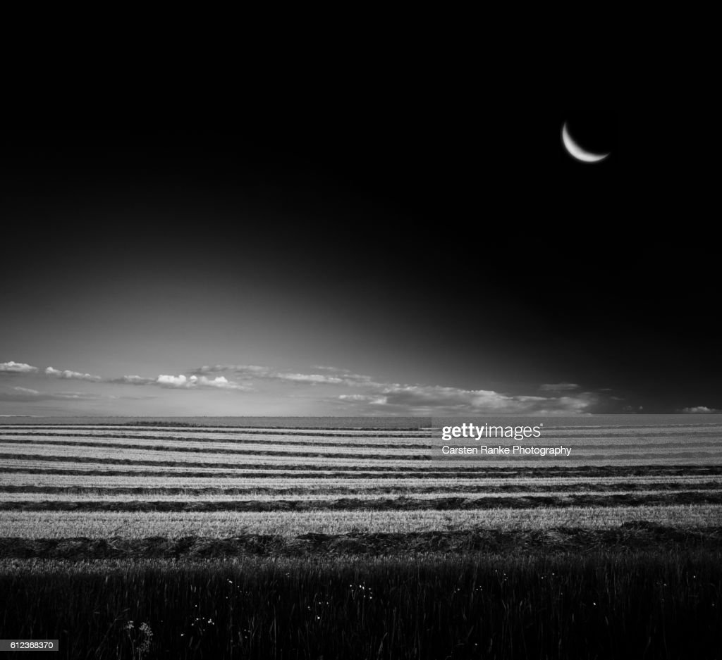 Moonrise, nowhere : Stock-Foto