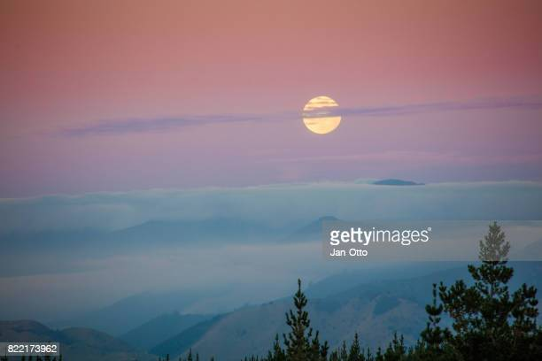 moonrise on south island, new zealand - flower moon stock pictures, royalty-free photos & images