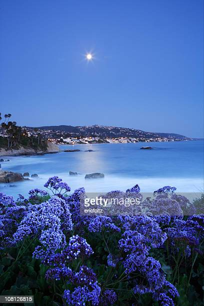 moonrise over laguna - laguna beach california stock pictures, royalty-free photos & images