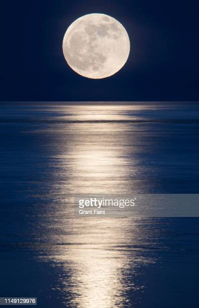moonrise over ocean. - image stock pictures, royalty-free photos & images