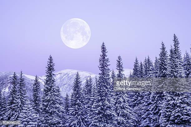 moonrise - snow moon stock pictures, royalty-free photos & images