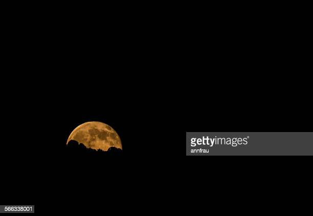 moonrise - annfrau stock pictures, royalty-free photos & images