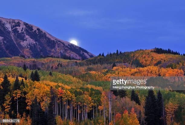 Moonset at Kebler Pass