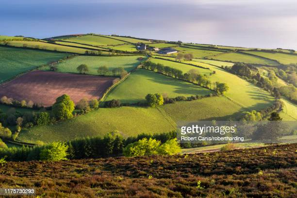 moor and farmland in spring, exmoor national park, devon, england, united kingdom, europe - exmoor national park stock pictures, royalty-free photos & images