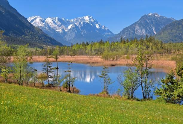 Moor landscape near the Seven Springs towards the Zugspitze massif in the Wetterstein range, Eschenlohe, Loisachtal, Das Blaue Land, Upper Bavaria, Bavaria, Germany