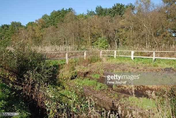 Moorfläche am Wanderweg im Naturschutzgebiet Huvenhoopsmoor, Landkreis Rotenburg / Wümme, Niedersachsen, Deutschland, Europa, Moor, Natur, Reise,
