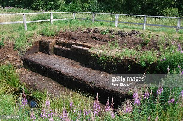 Moorfläche im Naturschutzgebiet Huvenhoopsmoor, Landkreis Rotenburg / Wümme, Niedersachsen, Deutschland, Europa, Natur, Torf, Moor, Reise,