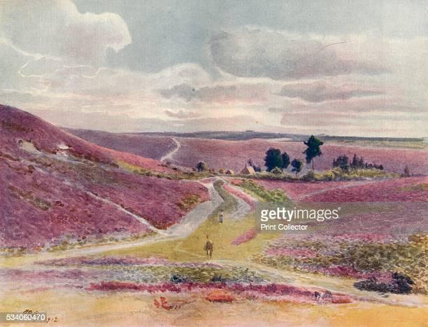 Moorland at Frensham' from 'A Pilgrimage In Surrey Vol 1' by James S Ogilvy 1914 Frensham Surrey