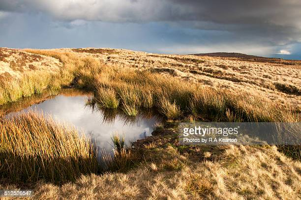Moorland pool at Stanage Edge