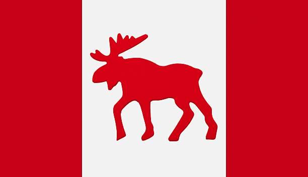 Moose emblem on Canadian flag