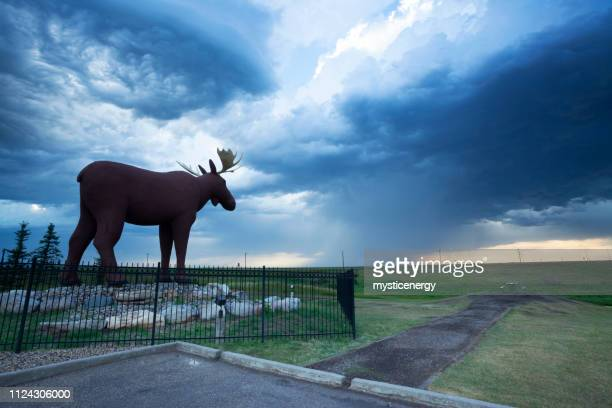 moose jaw saskatchewan canada mac the moose - saskatchewan stock pictures, royalty-free photos & images