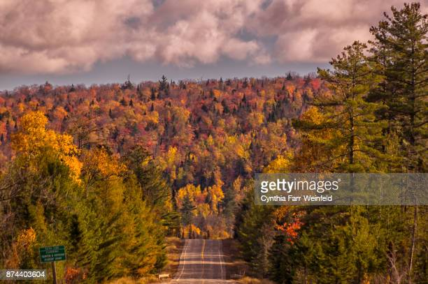 moosehead area autumn foliage - moosehead lake stock photos and pictures