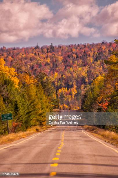 moosehead area foliage - moosehead lake stock photos and pictures