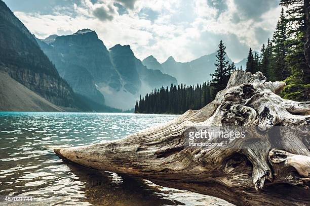 See Moraine Lake im Banff Nationalpark-Kanada