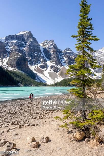 moraine lake in the valley of the ten peaks, south of the town of lake louise, alberta, canada - valley of the ten peaks stock pictures, royalty-free photos & images