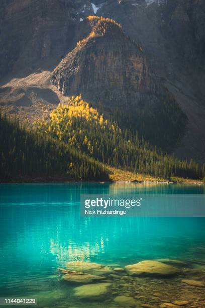 moraine lake on a sunlit autumn day, banff national park, alberta, canada - canadian rockies stock pictures, royalty-free photos & images