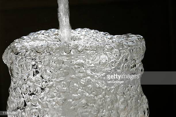 more bubbly anyone? - ian grainger stock pictures, royalty-free photos & images