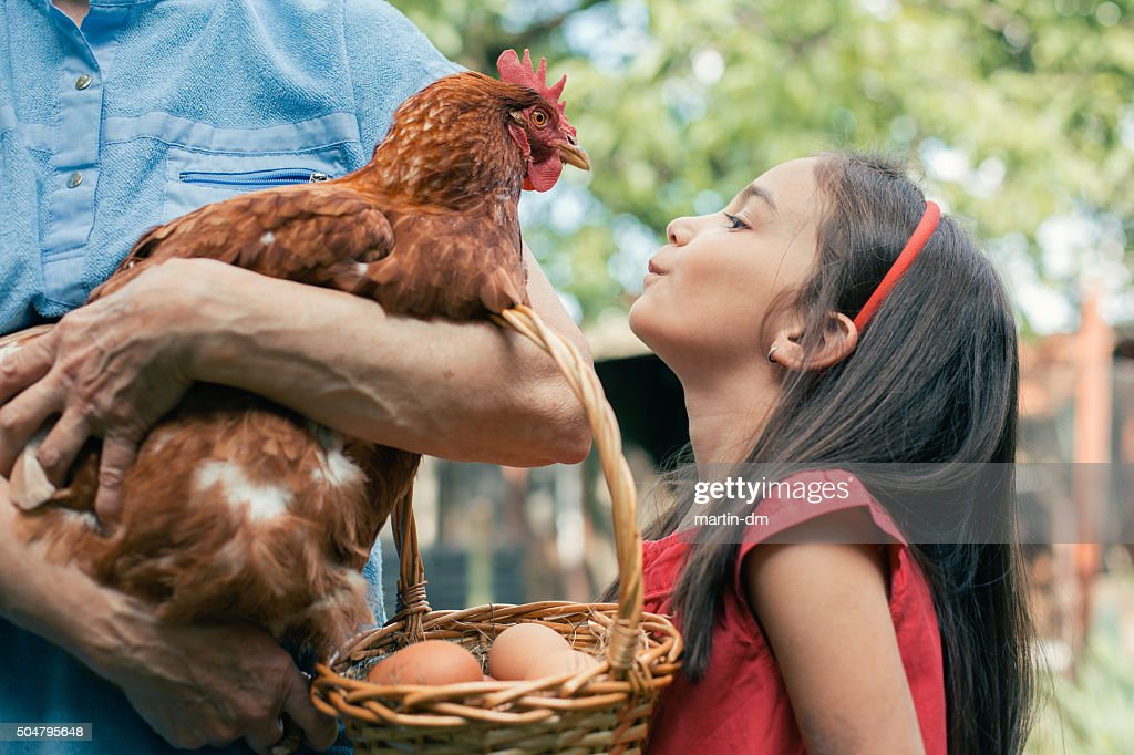 More eggs for tomorrow : Stock Photo