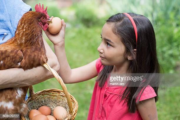 Mehr Eier für morgen bitte